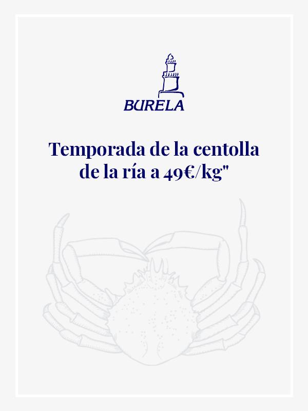 CENTOLLA_POPUP