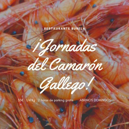 restaurante-burela-jornadas-camaron-gallego-2021